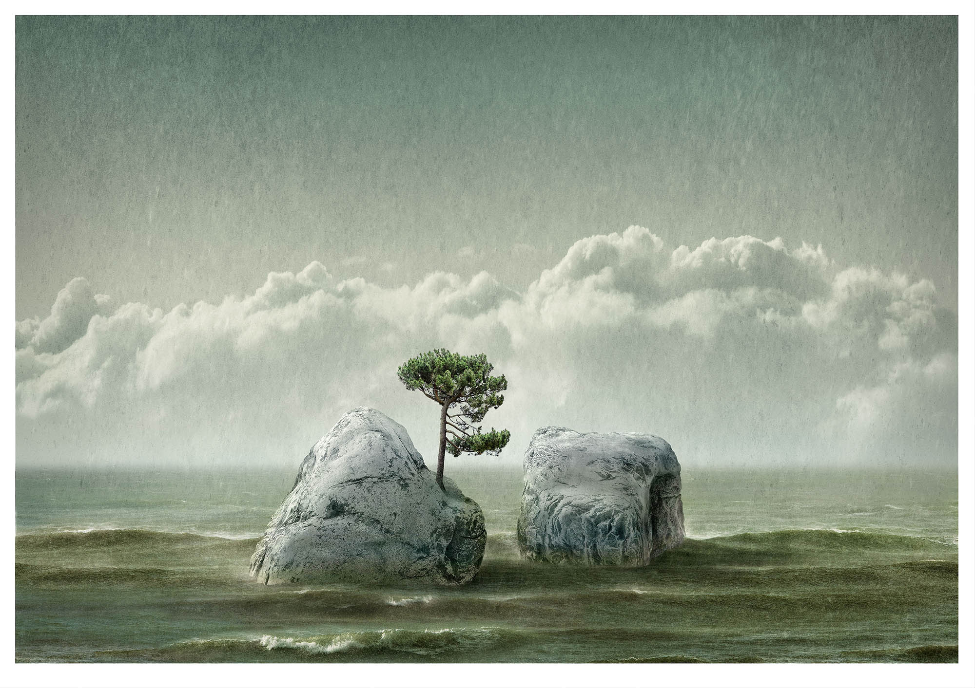 Illustrative fantasy, composite photograph with two small islands with one pine tree in middle of a sea