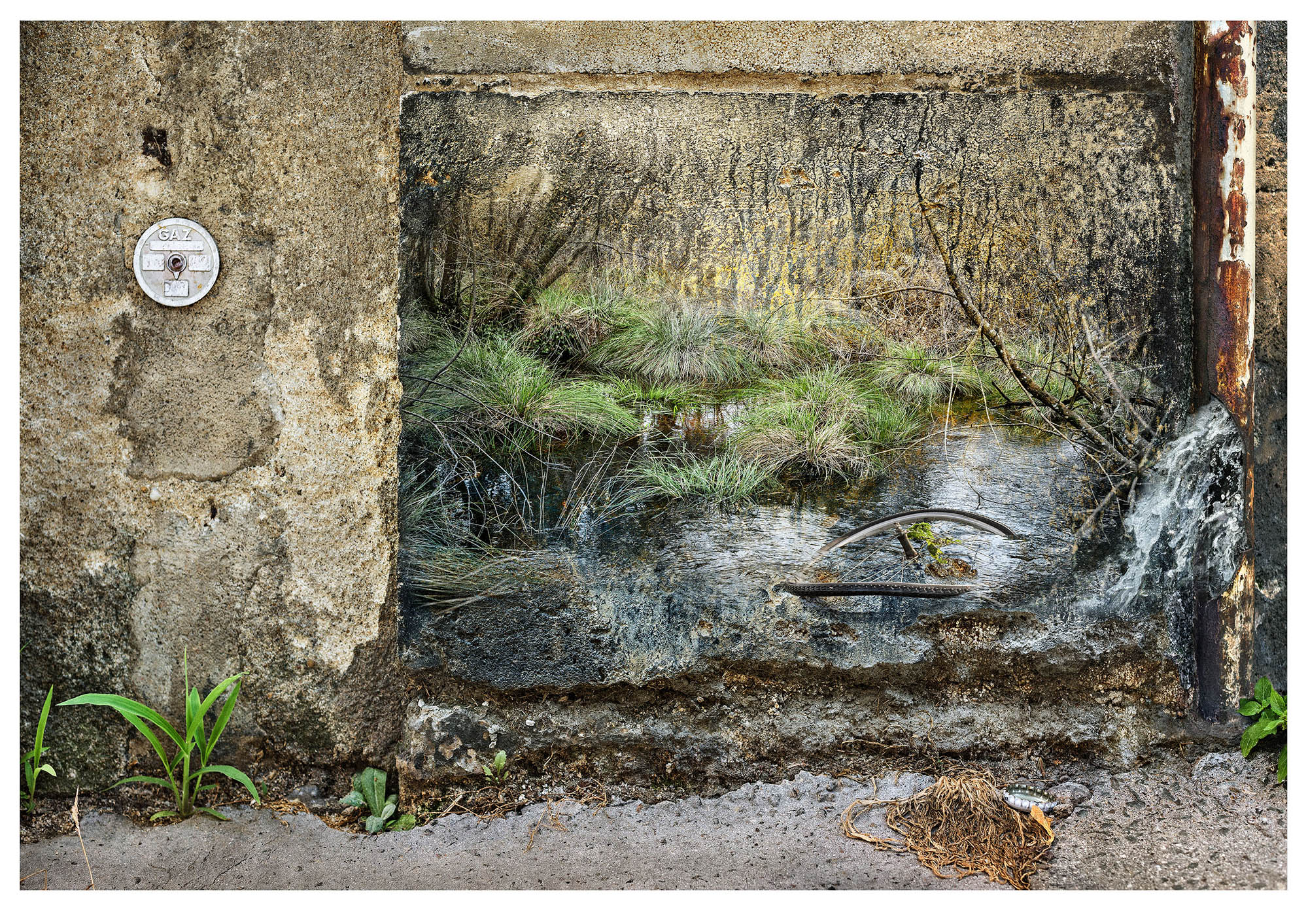 6th composite photograph in series: on a wall a gentle woodland stream scene is superimposed all spoiled by a buckled bicycle wheel discarded in the water