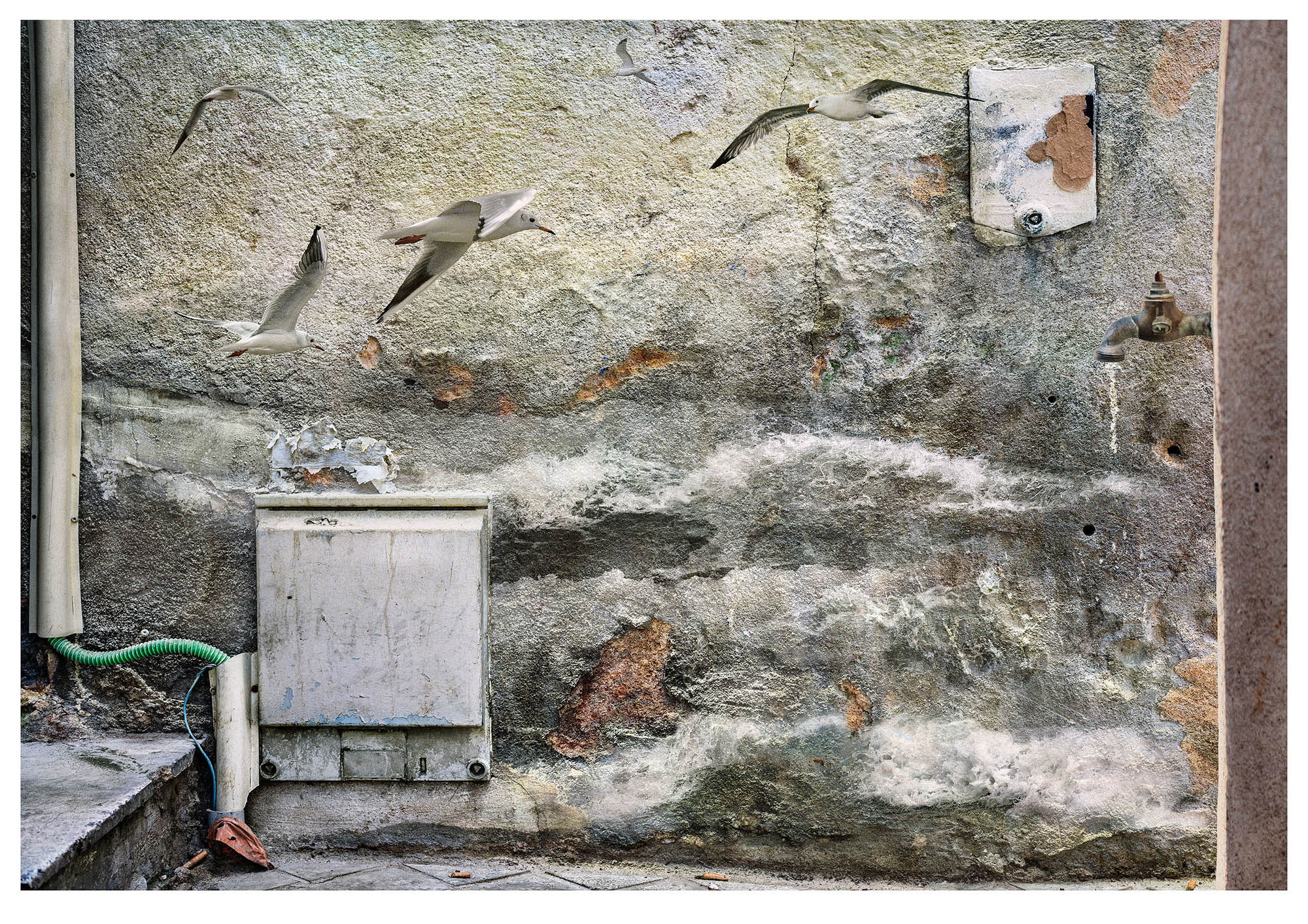No. 8 last in series: a crumbling wall with elecric junction box is the background to overlaid stormy seas and flying seagulls- illustrates the fear of rising water levels